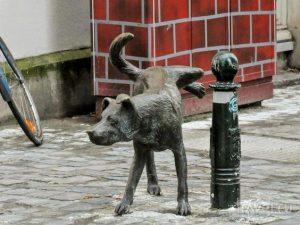 Brussel - het trio van plassende beelden